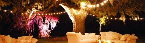 Outdoor Lounges and Function Lighting